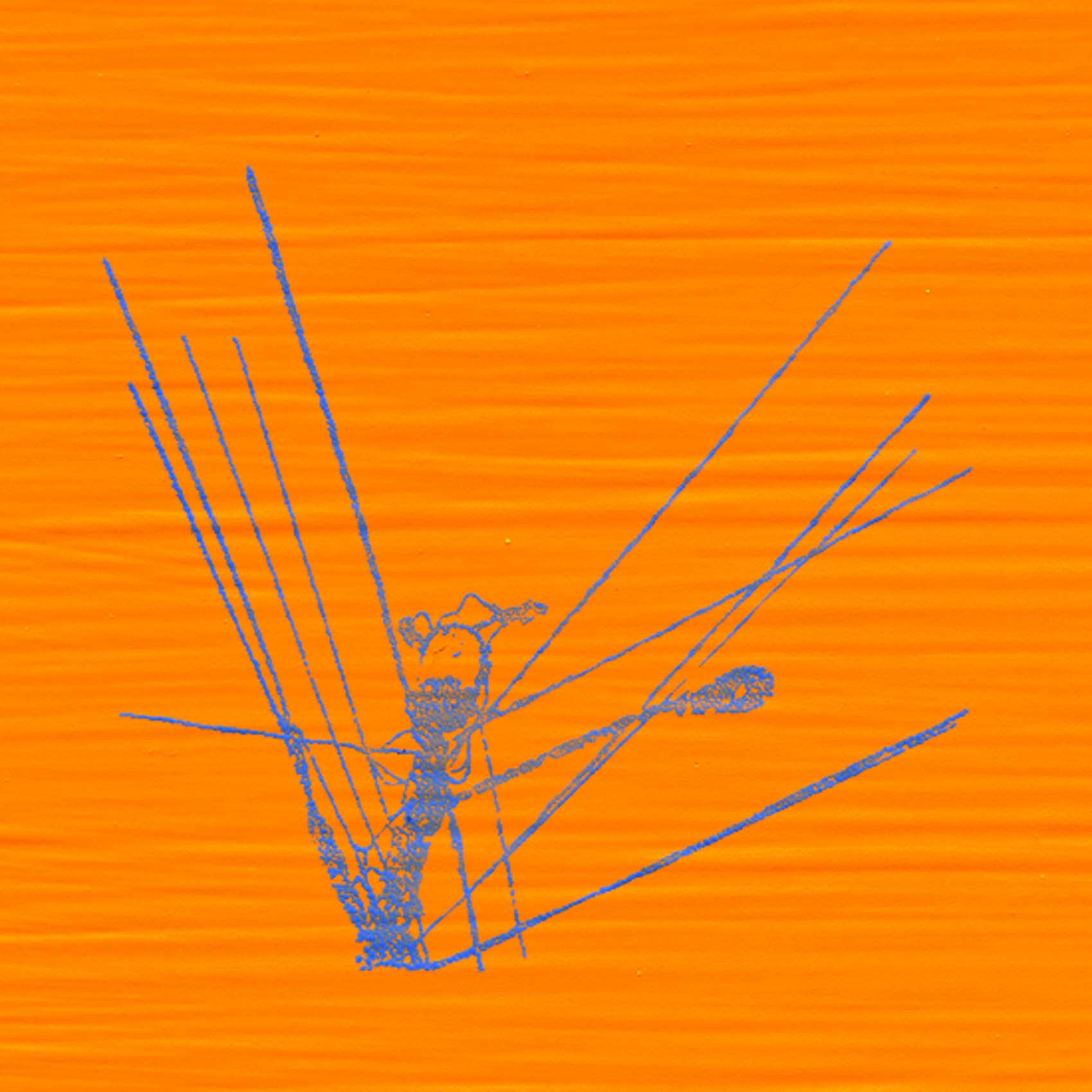 Wirey; blue; on orange; 030613