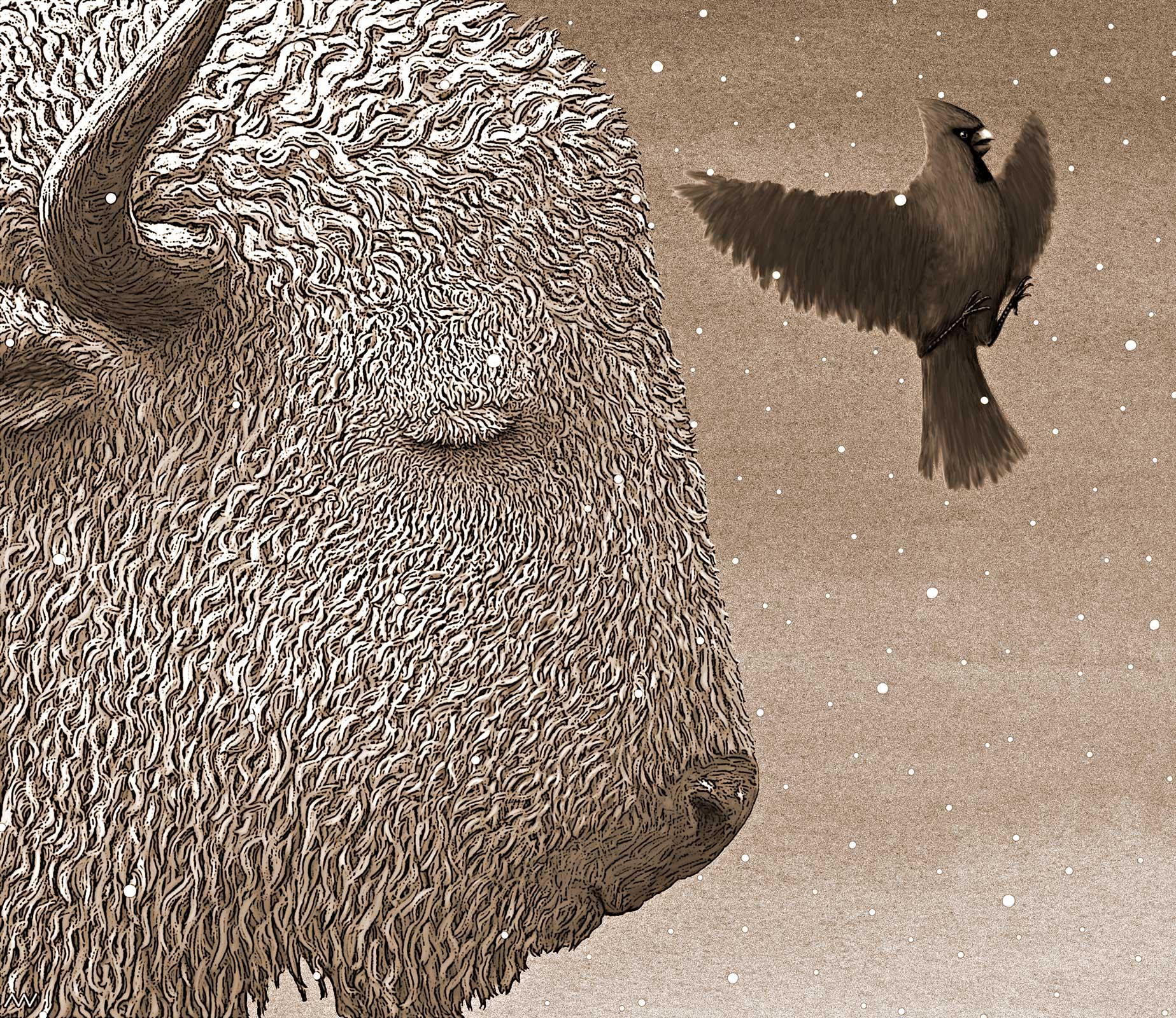 Buffalo Gal; 1999; sepia