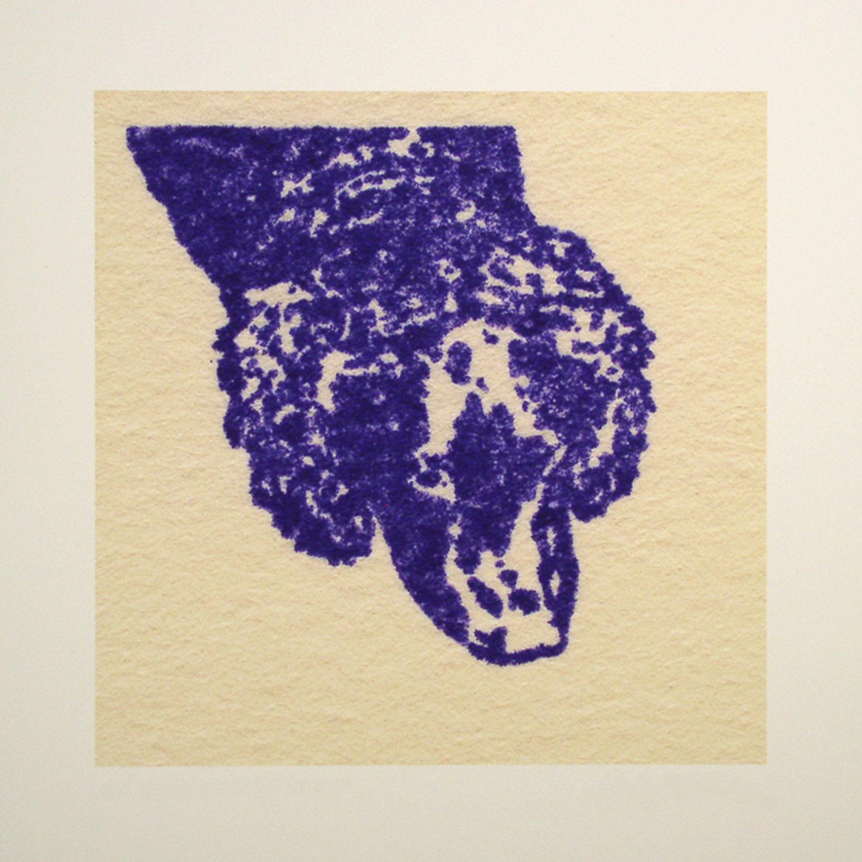 """Charlie; violet; 2007; image size 10"""" x 10"""""""