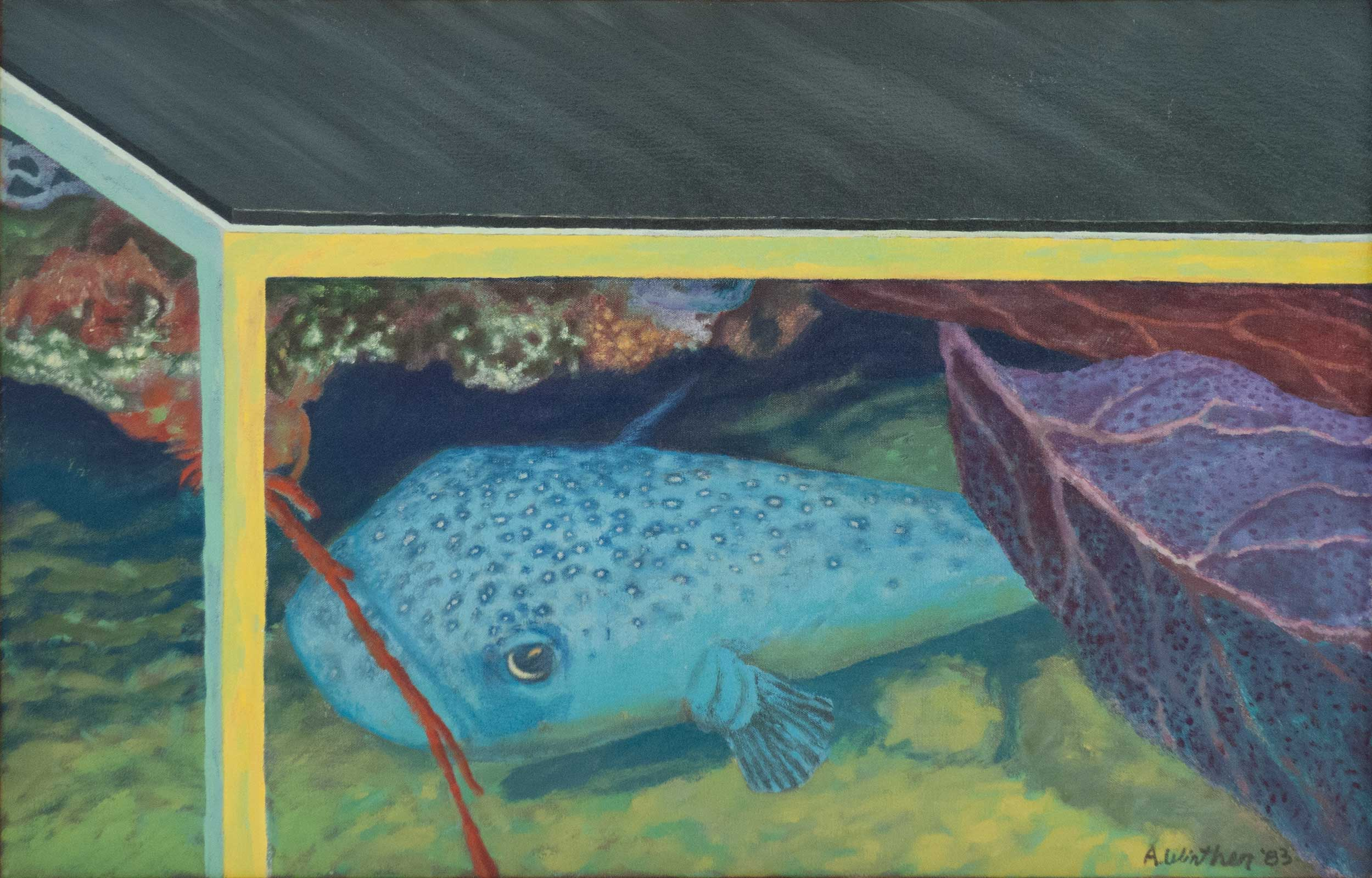 "Blowfish; 1983; oil on canvas; 18"" x 28"""